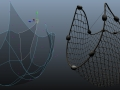 Finished_Netting